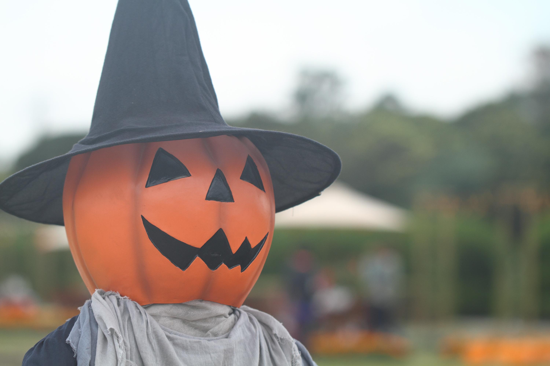 川崎ハロウィンってどんなイベント?パレードやアワードなど企画が盛りだくさん♪