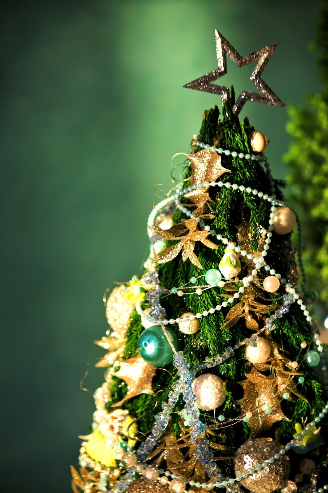 クリスマスの飾りつけはいつからいつまで?部屋や庭や玄関を飾る時期は!