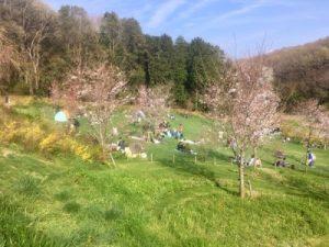 里山ガーデンのピクニック広場