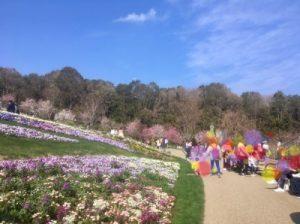 里山ガーデン大花壇