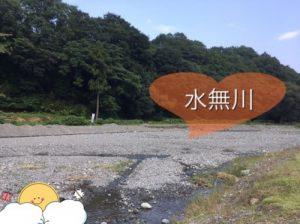 秦野戸川公園の水無川